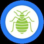 Bed Bug Control Newstead